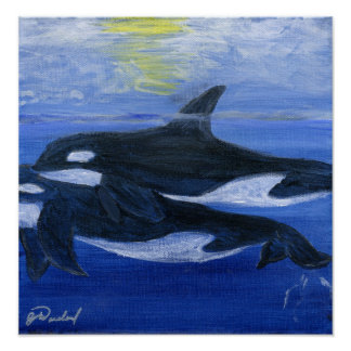 Orca whale poster print