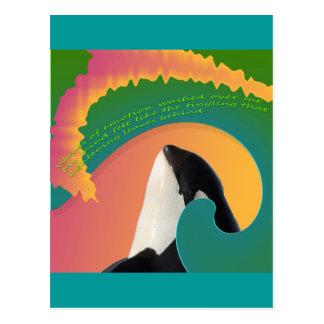 Orca Whale Rainbow Wave Postcards