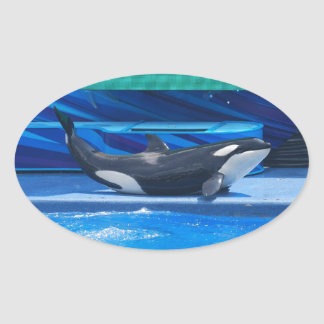 Orca Whale Showing Off Oval Sticker