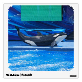 Orca Whale Showing Off Wall Skins