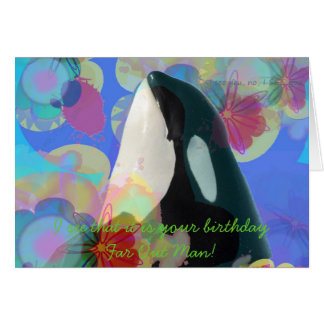 Orca Whale Spy Hop Multicolor Graphic-I SEE You Card