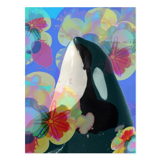 Orca Whale Spy Hop Multicolor Graphic-I SEE You Postcard