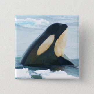 Orca Whale Spyhop blue Pinback Button
