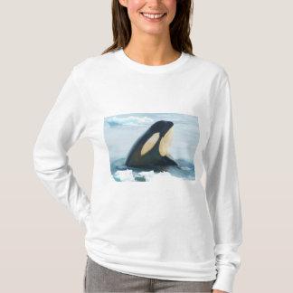 Orca Whale Spyhop blue T-Shirt