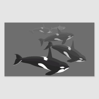 Orca Whale Stickers Killer Whale Art Stickers