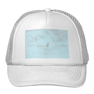 Orca Whale Swimming Drawing Turquoise Lavender Hats