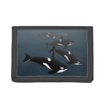 Orca Whale Wallet Killer Whale Art Wallets Gifts
