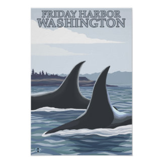 Orca Whales #1 - Friday Harbor, Washington Poster