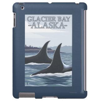 Orca Whales #1 - Glacier Bay, Alaska