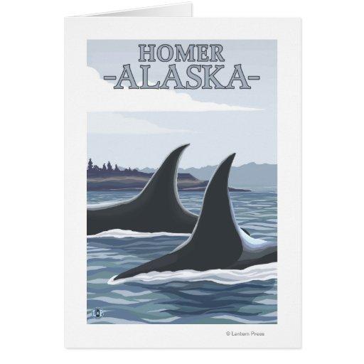 Orca Whales #1 - Homer, Alaska Cards