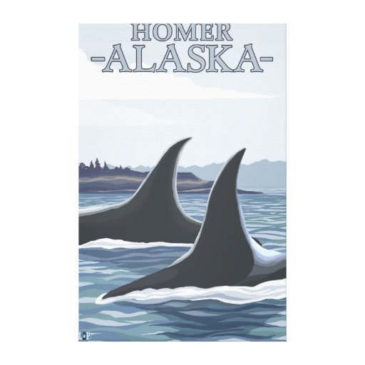 Orca Whales #1 - Homer, Alaska Gallery Wrap Canvas