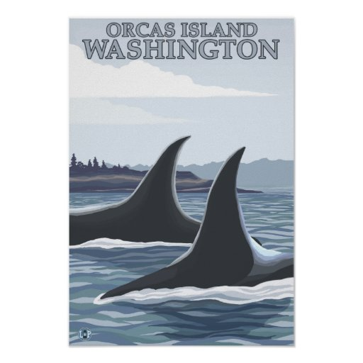 Orca Whales #1 - Orcas Island, Washington Poster