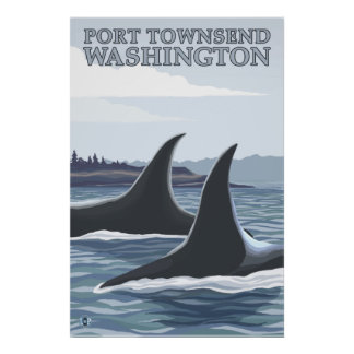 Orca Whales #1 - Port Townsend, Washington Poster
