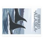 Orca Whales #1 - Seward, Alaska Postcards
