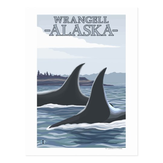 Orca Whales #1 - Wrangell, Alaska Postcard