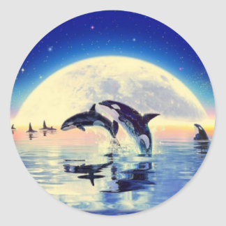 Orca Whales Classic Round Sticker