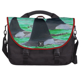 Orca Whales Come Sailing on Christmas Day Holiday Laptop Messenger Bag