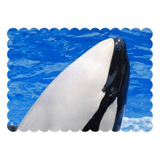 Orca Whales Invite