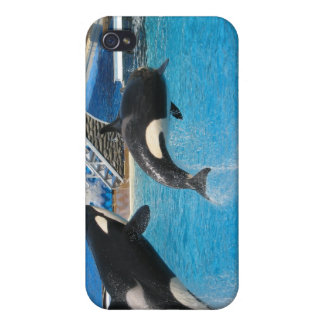 Orca Whales iPhone Case Case For iPhone 4