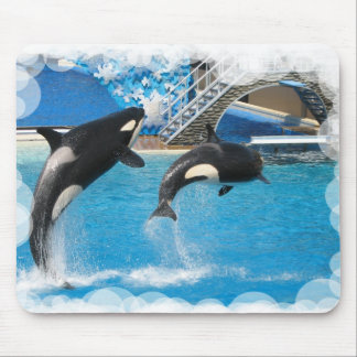 Orca Whales Mouse Pad