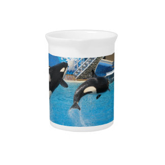 Orca Whales Pitcher