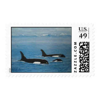 Orca Whales Postage