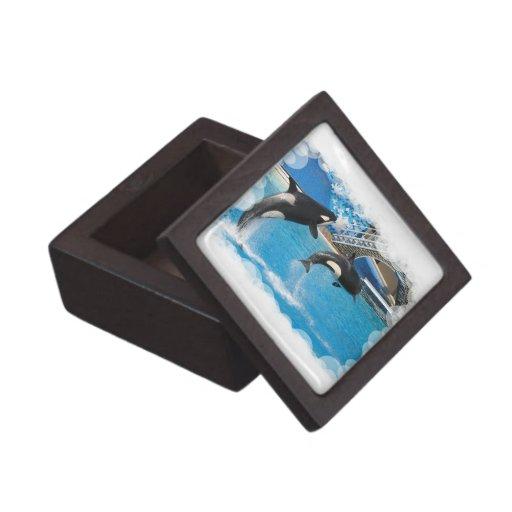 Orca Whales Premium Gift Box