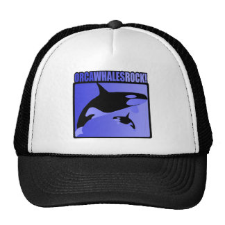 Orca Whales Rock Hat