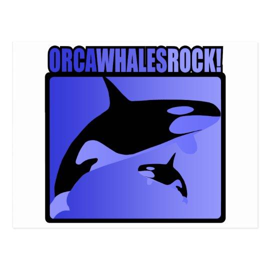 Orca Whales Rock! Postcard