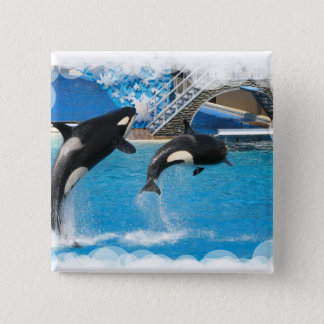 Orca Whales Square Button