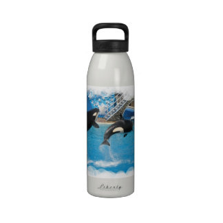 Orca Whales Water Bottle
