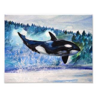 Orca wildlife watercolor photo print