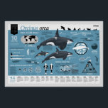 """Orcagraphic poster - English edition<br><div class=""""desc"""">This infographic poster shows all the essential facts and figures about Orcinus orca. A great tool for your school, museum, whale-watch company etc. But also a musthave for every orcaholic! This poster are a production or Orcazine, the journal for orcaholics. Written and designed by Leonard Boekee, with beautiful illustrations or...</div>"""