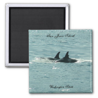 Orcas! 2 Inch Square Magnet
