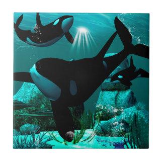 Orcas Azulejo Cuadrado Pequeño