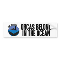 Orcas Belong in the Ocean Bumper Sticker