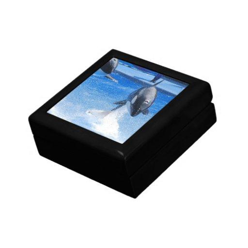 Orcas de salto cajas de recuerdo