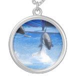 Orcas de salto collar