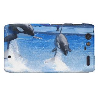 Orcas de salto motorola droid RAZR fundas