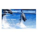 Orcas de salto plantillas de tarjeta de negocio