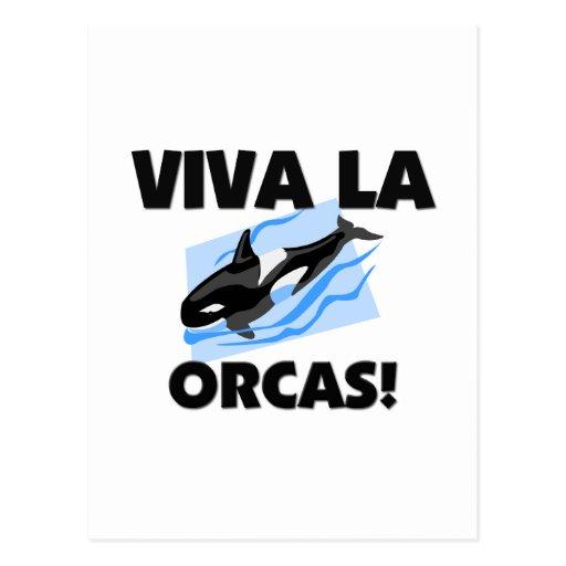 Orcas del La de Viva Tarjetas Postales