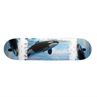 Orcas en un monopatín