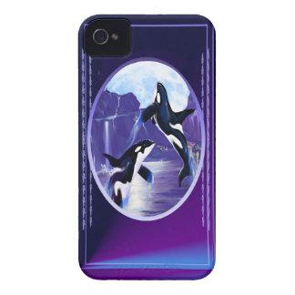 Orcas en una bahía iPhone 4 cárcasas