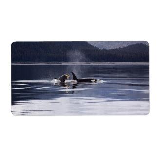 Orcas Etiquetas De Envío