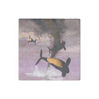 Orcas Stone Magnet