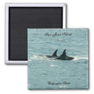 ¡Orcas! Imán Cuadrado