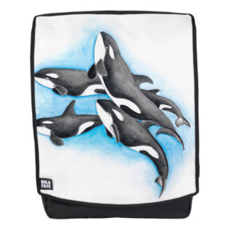 orcas in blue backpack