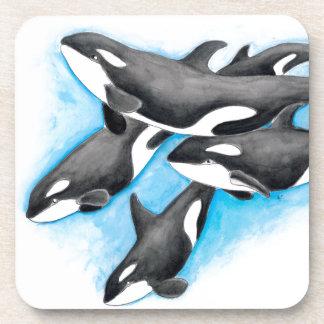 orcas in blue coaster