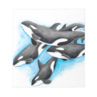 orcas in blue notepad