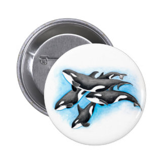 orcas in blue pinback button